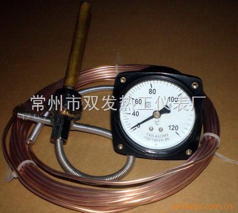 遙測溫度計