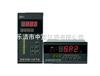 ZXWP-D805-020-23-HL智能PID调节仪