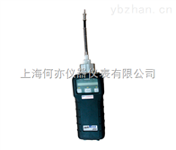 VOC检测仪PGM-7240