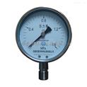 惠華牌-不銹鋼壓力表