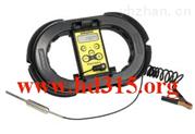 便携式数字温度计/电子数字式温度计/精密数字测温仪(瑞士)**