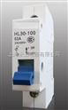 小型隔离开关 HL30-100/3P