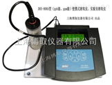 南京便攜式微量溶氧儀,ug/L溶解氧分析儀廠家