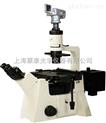 倒置熒光顯微鏡:DFM-80D
