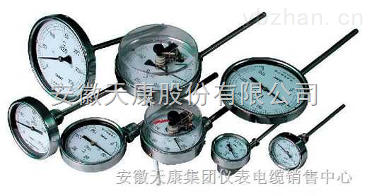 径向双金属温度计WSS-411