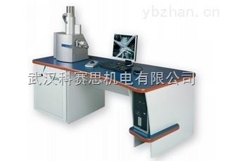 捷克泰思肯掃描電鏡湖北武漢專業銷售