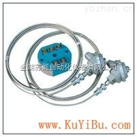 SBWZ-4470防爆铠装温度变送器