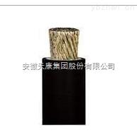 安徽天康硅橡胶绝缘电机绕组引接软线