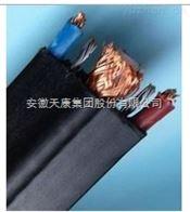 ZR-YGCRPB安徽天康阻燃硅橡胶软电缆