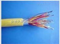 ZR-DJYVP22- 4*2*1.5安徽天康计算机电缆