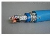 安徽天康本安型计算机电缆型号