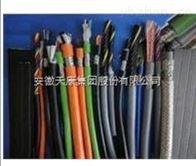 ZR-KVVP24*1.0安徽天康阻燃控制電纜