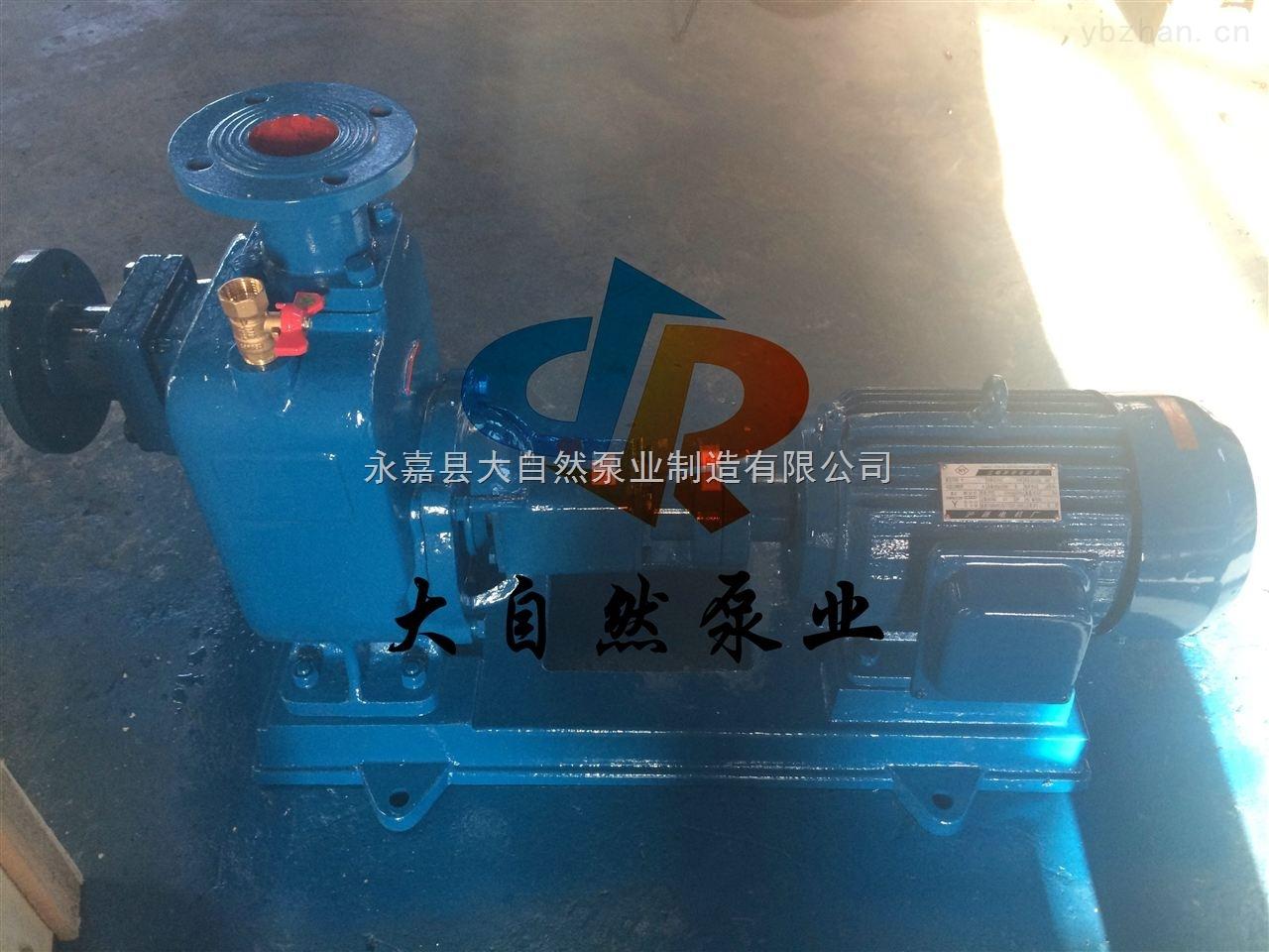 40ZW10-20-供应40ZW10-20自控自吸泵