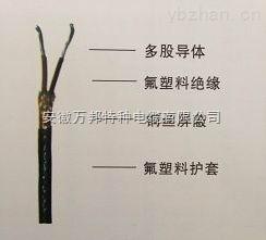 氟塑料绝缘屏蔽控制电缆