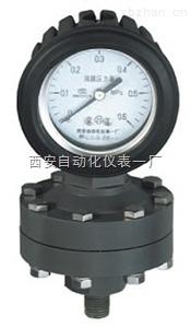 全塑隔膜压力表,型号YTP-100S/75S