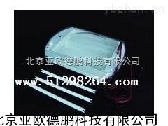 DP-DYCP-38C-臥式水平電泳儀