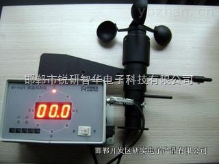 锐研风速风向一体监控仪(带主机)