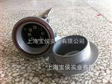 WZP-24S防爆熱電阻 工控儀表銷售