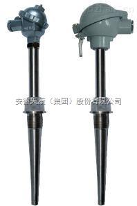 安徽天康生产WRE2-430M耐磨阻漏热电偶