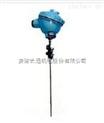 WZPK2-136双支铠装铂热电阻