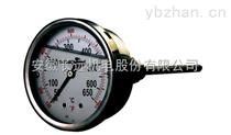 WTZ-288ZT L=5M 轴向带边电接点压力式温度计