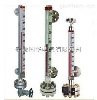 带电伴热装置的磁翻柱液位计