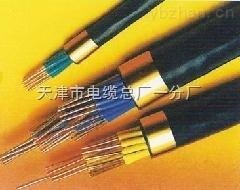 NH-KYVP2/22NH-KYVP2/22电子高温电缆-屏蔽电缆