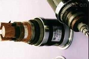 BPFFP耐高温变频电缆