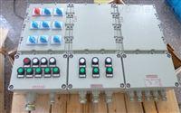 BXM(D)51防爆照明(动力)配电箱厂家(dⅡBT4)