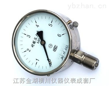 耐温压力表,耐温压力表厂家/价格