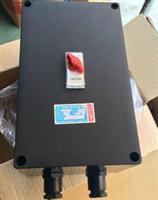 BLK8050-63A防爆防腐塑壳断路器