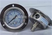 軸向式不銹鋼壓力表