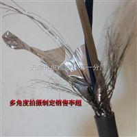 阻燃耐火双绞线NH-RVSP2*10mm低压电线电缆