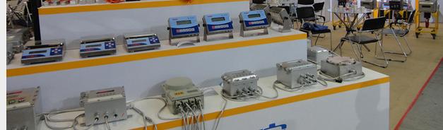 技术参数3kg防暴电子秤,3kg防爆天平 诚信取天下,品质印人心用心服务从这里开始 多功能防爆电子秤 防爆标志:Ex ibCT5; 准确度等级:; 称量范围:100kg~30t; 显示分辨率:1000~30000; 分度值:0.001~50; 安全超载:150FS; 显示方式:6 位段码型液晶显示器,字高30mm; 充电方式:拆下电池组在安全区充电; 待机时间:满冲可待机70小时左右; 主要组成:铸铝秤体、主板、安全栅组件、本安型传感器防爆标志ExiaCT6 3kg防暴电子秤,3kg防爆天