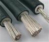 电机引接线 高压电机引接线