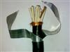 ZR-KVVP22阻燃【铠装】控制电缆 天康屏蔽电缆