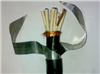 KFVP22钢带铠装控制电缆