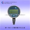 精密数字压力表 电子式标准压力表